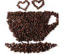 Семена кофейного дерева (10 шт.)
