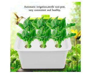 Гидропонный проращиватель растений (6 отверстий)